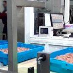 Así de fácil es comprar marisco fresco online de calidad