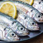 El jurel, un pescado azul rico en ácidos grasos omega-3