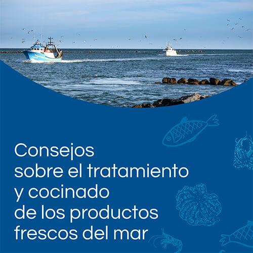 Manual práctico de tratamiento y cocinado de pescados y mariscos